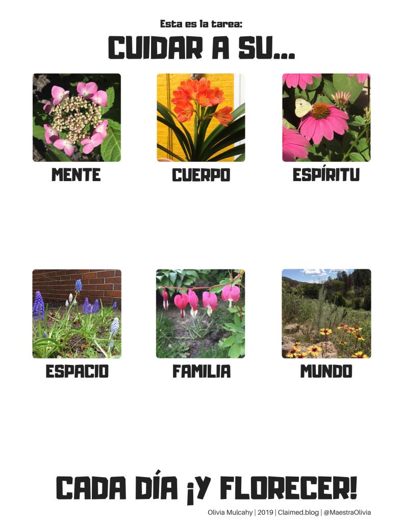 https://maestraoliviablog.files.wordpress.com/2020/08/take-care-espanol-blank.pdf