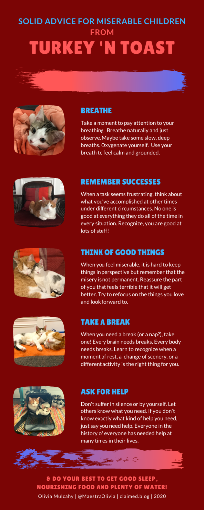 https://maestraoliviablog.files.wordpress.com/2020/11/solid-advice-from-turkey-n-toast-1.pdf